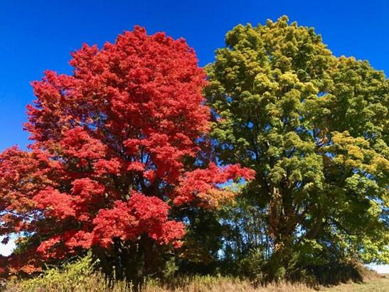 9-12 Catskill View Rd, Claverack, NY - USA (photo 4)