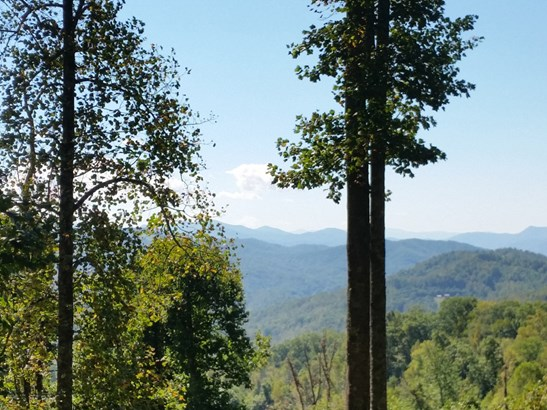 Lot 17  Forest Rose Lane, Sylva, NC - USA (photo 1)