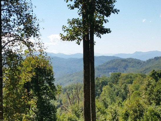 Lot 17  Forest Rose Lane, Sylva, NC - USA (photo 2)