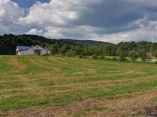 3016  Locust Grove Road, Hendersonville, NC - USA (photo 3)