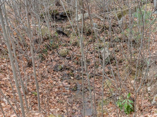 Lot 231  Chesterfield Drive, Mill Spring, NC - USA (photo 1)