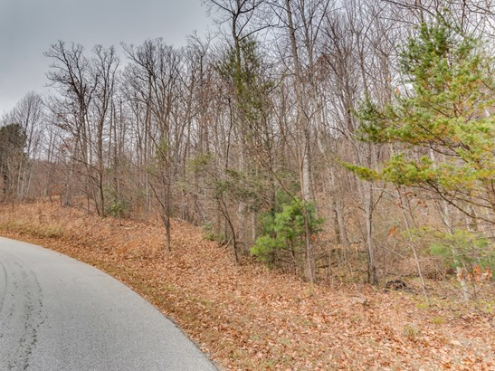 Lot 231  Chesterfield Drive, Mill Spring, NC - USA (photo 2)
