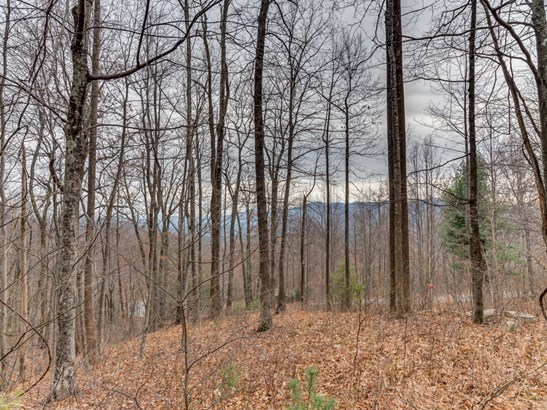 Lot 231  Chesterfield Drive, Mill Spring, NC - USA (photo 3)