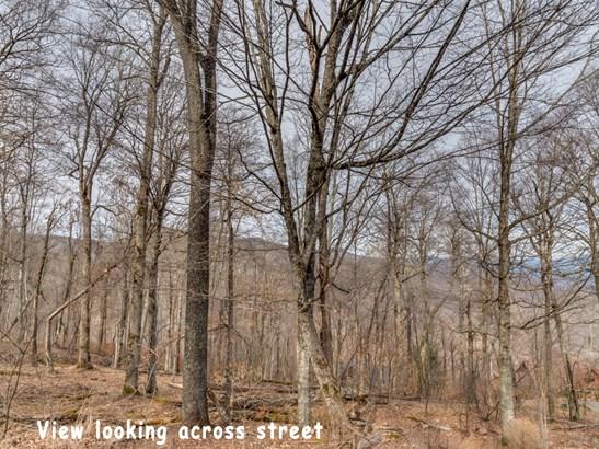 0000  Overlook Drive, Mars Hill, NC - USA (photo 4)