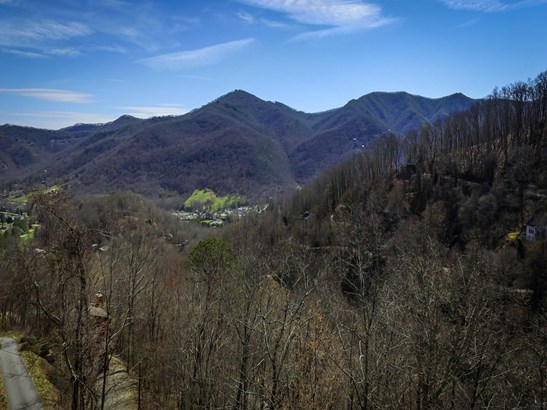 00  Saddle Drive, Maggie Valley, NC - USA (photo 1)