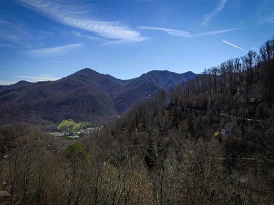 00  Saddle Drive, Maggie Valley, NC - USA (photo 3)