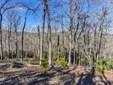 100  Buckhead Trail, Horse Shoe, NC - USA (photo 1)