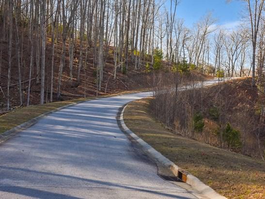 100  Buckhead Trail, Horse Shoe, NC - USA (photo 5)