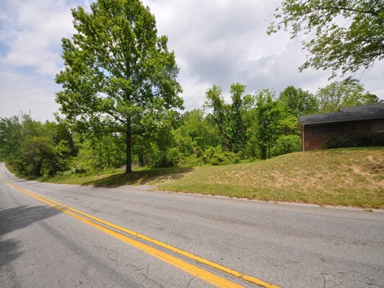 0  Duncan Hill Road, Hendersonville, NC - USA (photo 3)