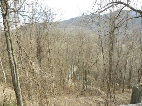 Lot 39  Grandview Cliff Heights, Maggie Valley, NC - USA (photo 2)