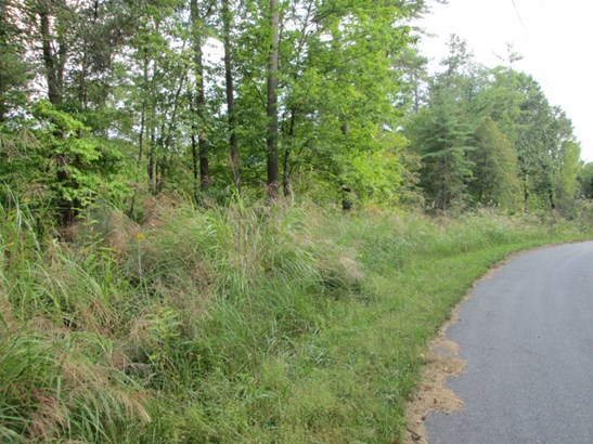 Lot #41  Quail Ridge Road, Mars Hill, NC - USA (photo 2)