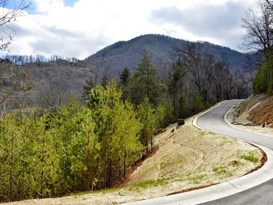 19  Eagles Pass Drive, Black Mountain, NC - USA (photo 1)