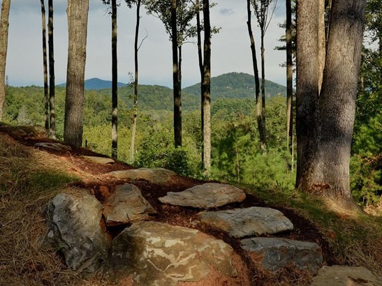0  French Broad Overlook, Arden, NC - USA (photo 2)