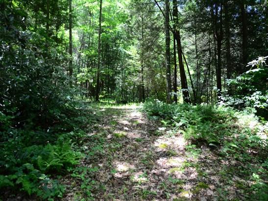 156  Trout Run Drive, Zirconia, NC - USA (photo 2)