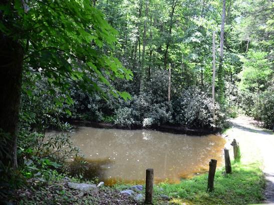156  Trout Run Drive, Zirconia, NC - USA (photo 4)