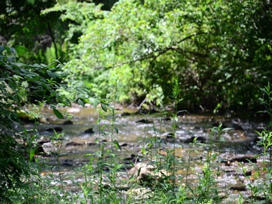 156  Trout Run Drive, Zirconia, NC - USA (photo 5)