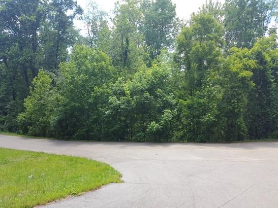 51  Leisure Lane, Swannanoa, NC - USA (photo 2)