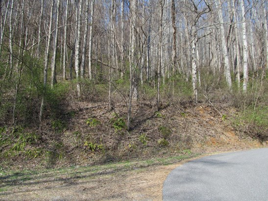 Lot 48  Forest Valley Road, Sylva, NC - USA (photo 1)