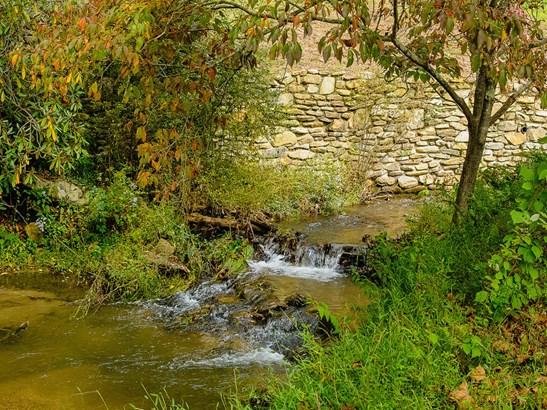 672  Garren Creek Road, Fairview, NC - USA (photo 4)