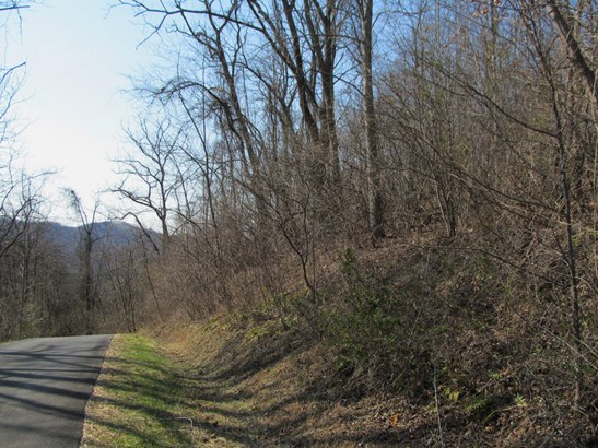 Lot 36  Valley View Drive, Sylva, NC - USA (photo 2)