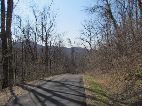 Lot 36  Valley View Drive, Sylva, NC - USA (photo 3)