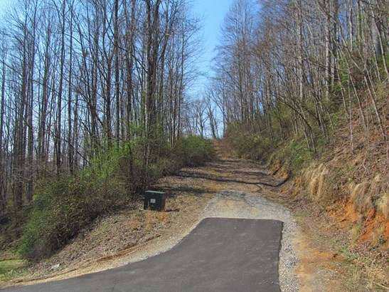 Lot 36  Valley View Drive, Sylva, NC - USA (photo 4)
