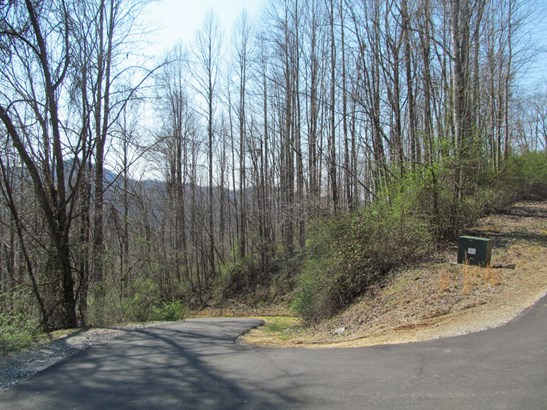 Lot 36  Valley View Drive, Sylva, NC - USA (photo 5)