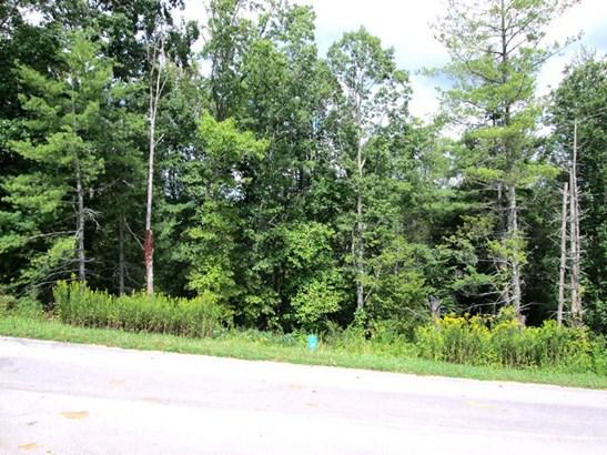Lot 28  Crossing Parkway, Marshall, NC - USA (photo 3)
