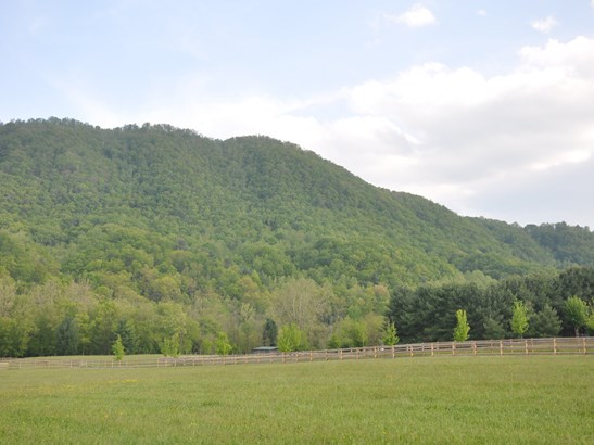 000  Cane Creek Road, Fletcher, NC - USA (photo 3)