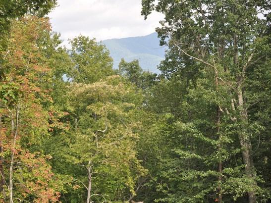 58  Sisters View Drive, Black Mountain, NC - USA (photo 2)