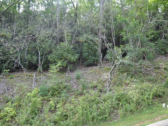 58  Sisters View Drive, Black Mountain, NC - USA (photo 3)