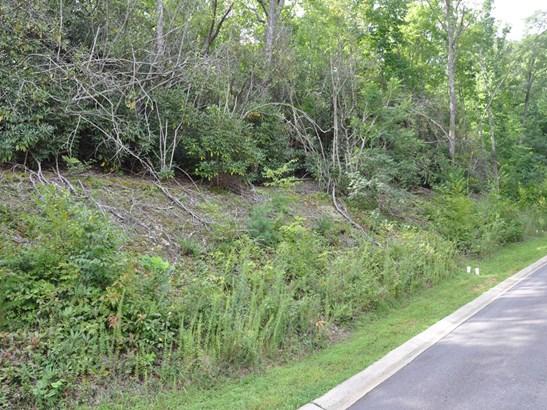 58  Sisters View Drive, Black Mountain, NC - USA (photo 4)