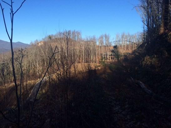 99  Settings Boulevard, Black Mountain, NC - USA (photo 4)