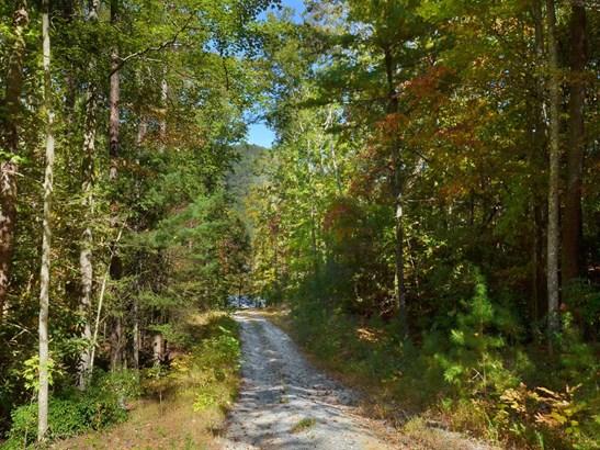 00  Riversound Lane, Saluda, NC - USA (photo 1)