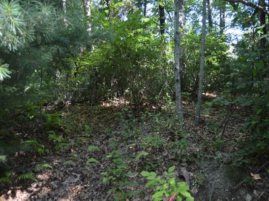 71 Acres  Locust Grove Road, Hendersonville, NC - USA (photo 5)