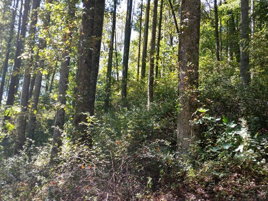 Lot 20  Forest Rose Lane, Sylva, NC - USA (photo 4)