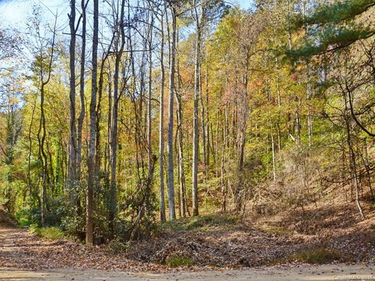 00  Morgan Hill Road, Black Mountain, NC - USA (photo 2)