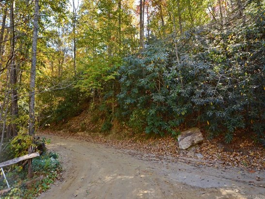 00  Morgan Hill Road, Black Mountain, NC - USA (photo 4)
