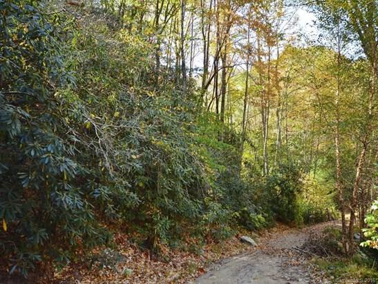 00  Morgan Hill Road, Black Mountain, NC - USA (photo 5)