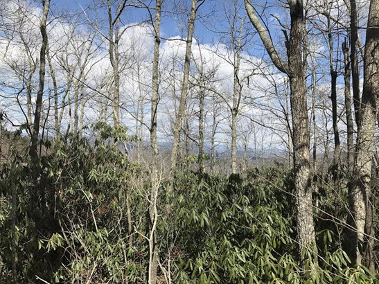 Lot 12  Pinnacle Mountain Road, Zirconia, NC - USA (photo 1)