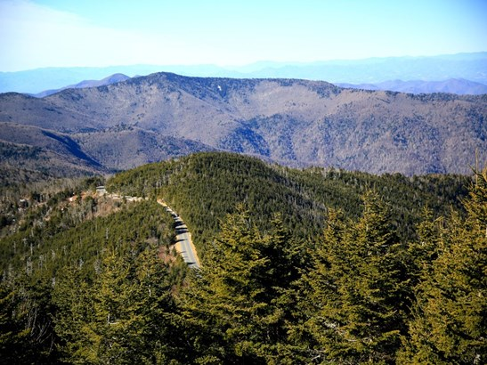 000  Wilson Boundary Road (32 Ac) , Burnsville, NC - USA (photo 4)