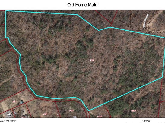 0  Old Home Road, Asheville, NC - USA (photo 2)