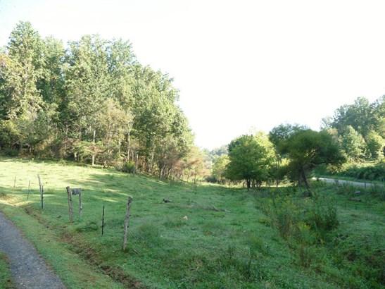 70  Whispering Pines (4.8 Ac.) , Marshall, NC - USA (photo 2)