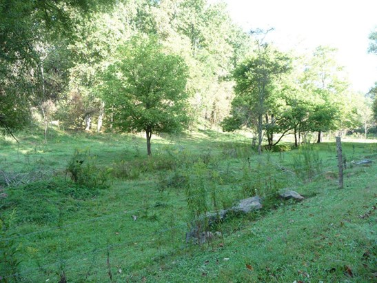 70  Whispering Pines (4.8 Ac.) , Marshall, NC - USA (photo 4)