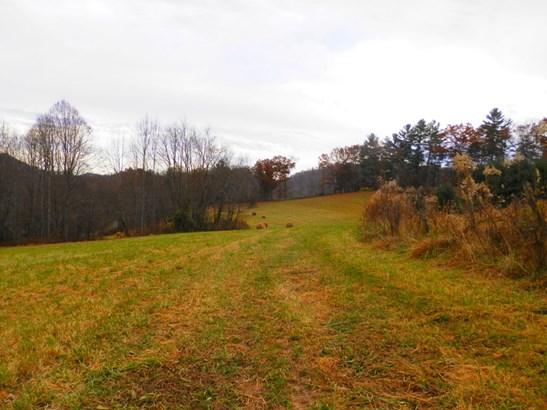 0  Rabbit Skin Road, Waynesville, NC - USA (photo 4)