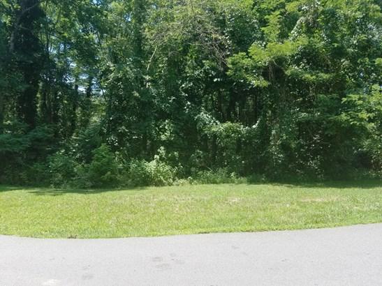 6  Lily Hill Road, Swannanoa, NC - USA (photo 3)