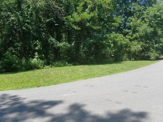 6  Lily Hill Road, Swannanoa, NC - USA (photo 4)
