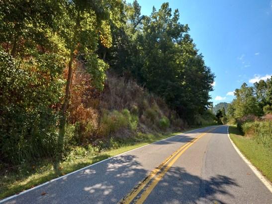 0000  Metcalf Creek Loop, Mars Hill, NC - USA (photo 3)