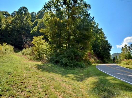0000  Metcalf Creek Loop, Mars Hill, NC - USA (photo 4)