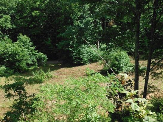 1212  Mcclure Creek , Canton, NC - USA (photo 1)